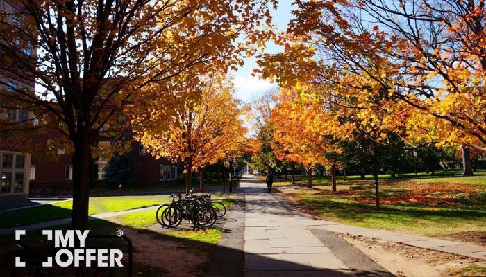 普林斯顿大学申请录取条件
