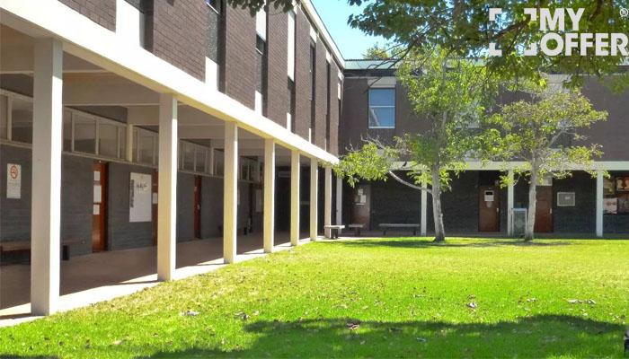 弗林德斯大学排名