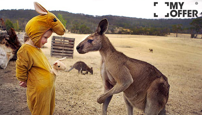 澳洲留学那些奇葩事