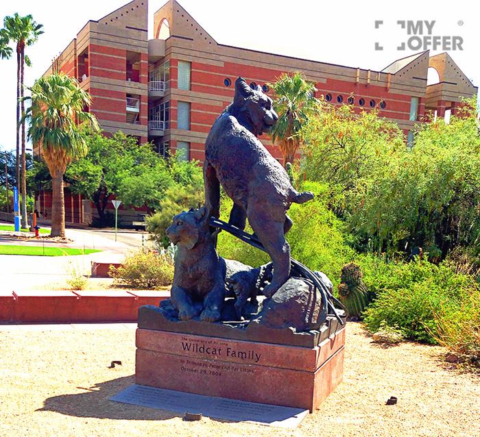 亚利桑那大学录取条件