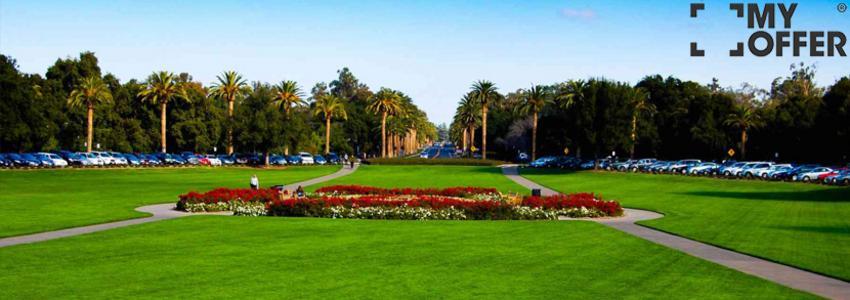 加入学霸的世界,斯坦福大学申请录取条件有哪些?