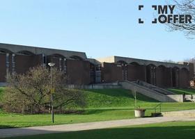 苏塞克斯大学专业排名和世界排名一览