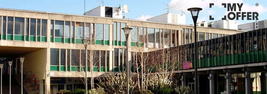 英国埃塞克斯大学优势专业排名一览