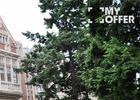 想去麻省理工学院留学,留学费用大概需要多少钱呢?
