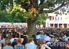2017-2018弗吉尼亚大学本科留学费用大概是多少?