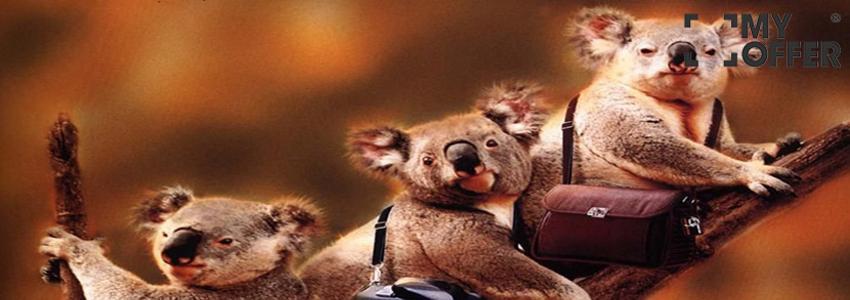 澳洲留学专业条件分析