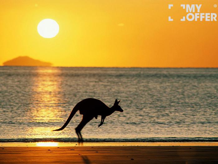 澳洲留学网站