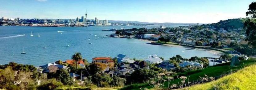 领钱了!新西兰政府设立了100万纽币留学生困难基金!