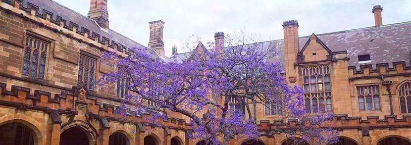 悉尼大学研究生一年留学费用多少