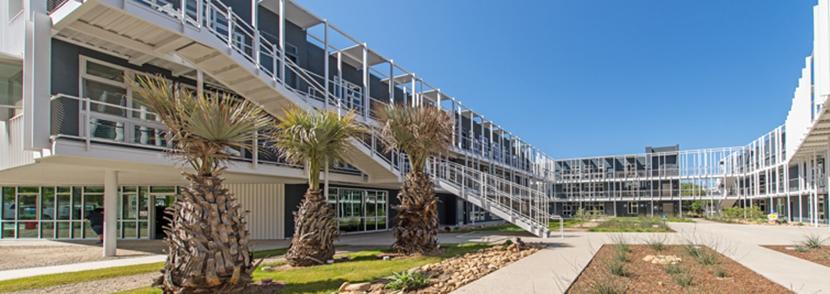 新南威尔士大学本科申请要求难度大吗?需要多少高考分?