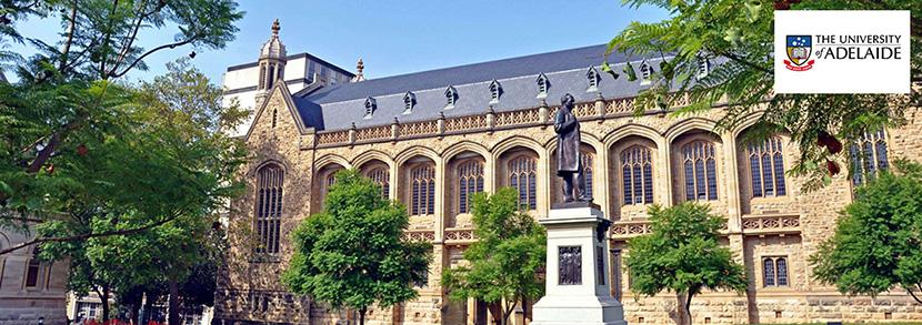 阿德莱德大学预科:课程要求、类型、费用介绍!