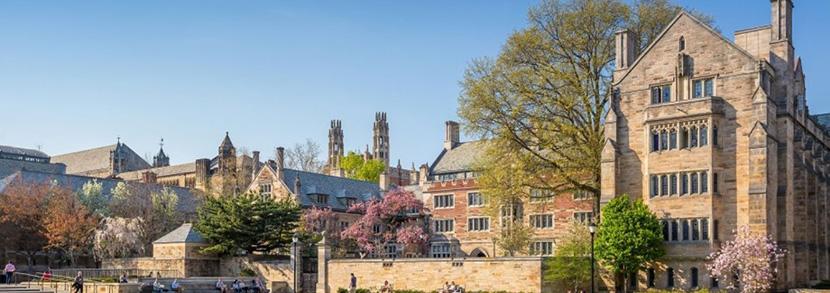 澳洲纽卡斯尔大学雅思申请要求有哪些?2019年本科解析!