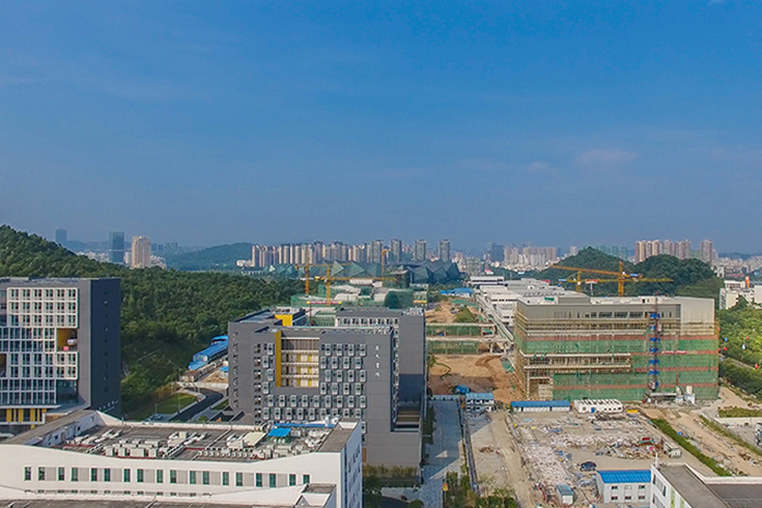 香港中文大学雅思要求