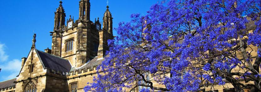 悉尼大学硕士回国年薪有多少?毕业生就业能力如何?