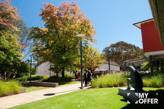 澳洲留学生活经验