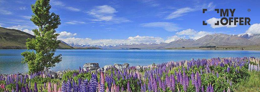新西兰高中留学条件有哪些?无雅思要求!