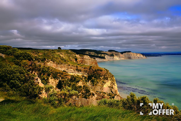 新西兰留学硕士申请流程