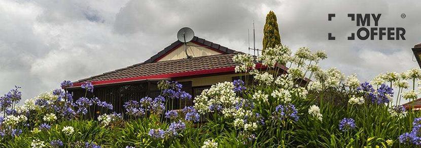 新西兰留学理工学院怎么样?读理工学院有哪些优势?