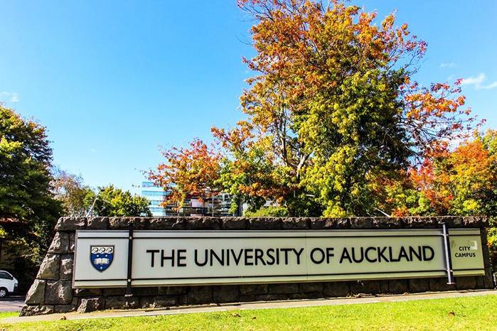 新西兰护理专业排名